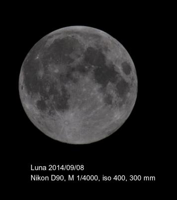 luna web4